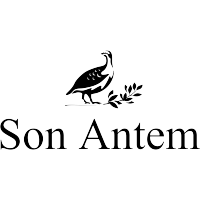 Golf Son Antem East